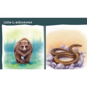 Eläinkortit - mystinen luonto